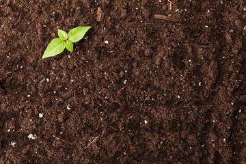Techno Parc : vente de terre végétale à Margaux