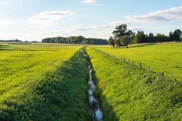 Busage de fossé pour créer un accès au terrain près de Margaux